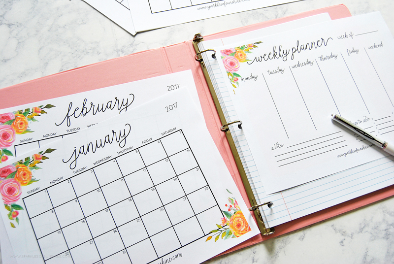 Free-Printable-2017-Monthly-Calendar-and-Weekly-Planner-5